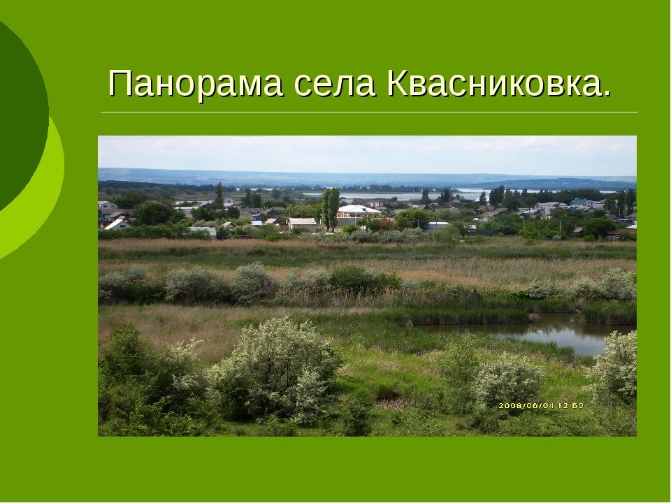 Панорама села Квасниковка.