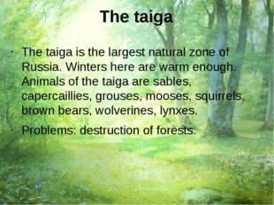 The taiga The taiga is the largest natural zone of Russia. Winters here are w