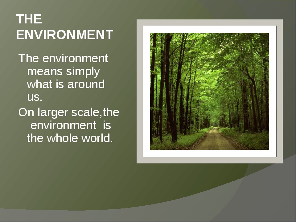 THE ENVIRONMENT The environment means simply what is around us. On larger sca...