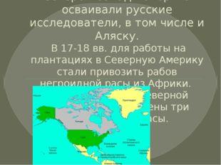 Северо – запад материка осваивали русские исследователи, в том числе и Аляску