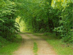 Музыкальная характеристика произведения «Осенняя песнь» В мелодии преобладают