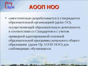 АООП НОО самостоятельно разрабатывается и утверждается образовательной органи