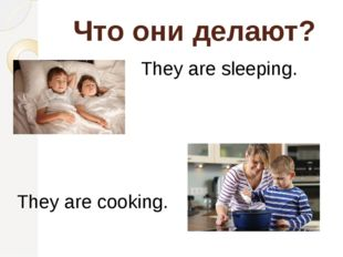 Что они делают? They are sleeping. They are cooking.