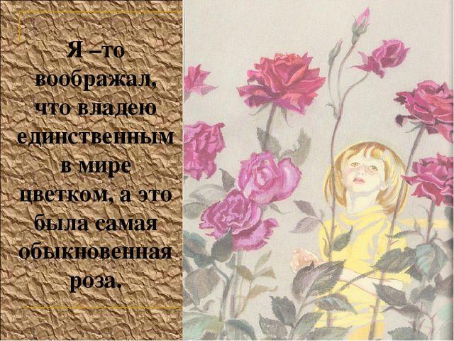 Я –то воображал, что владею единственным в мире цветком, а это была самая обы...