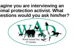 Imagine you are interviewing an animal protection activist. What questions wo