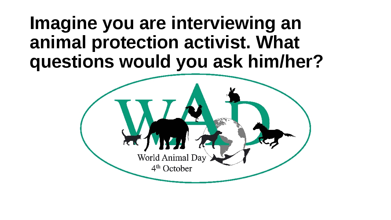 Imagine you are interviewing an animal protection activist. What questions wo...