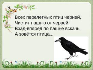 Всех перелетных птиц черней, Чистит пашню от червей, Взад-вперед по пашне