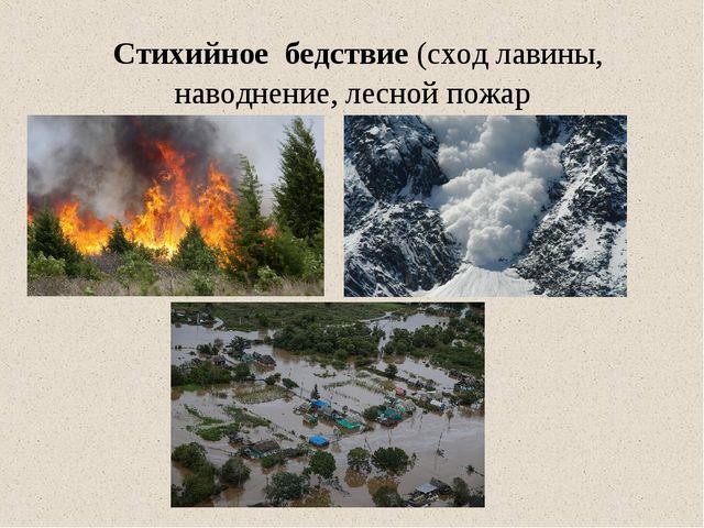 Стихийное бедствие(сход лавины, наводнение, лесной пожар