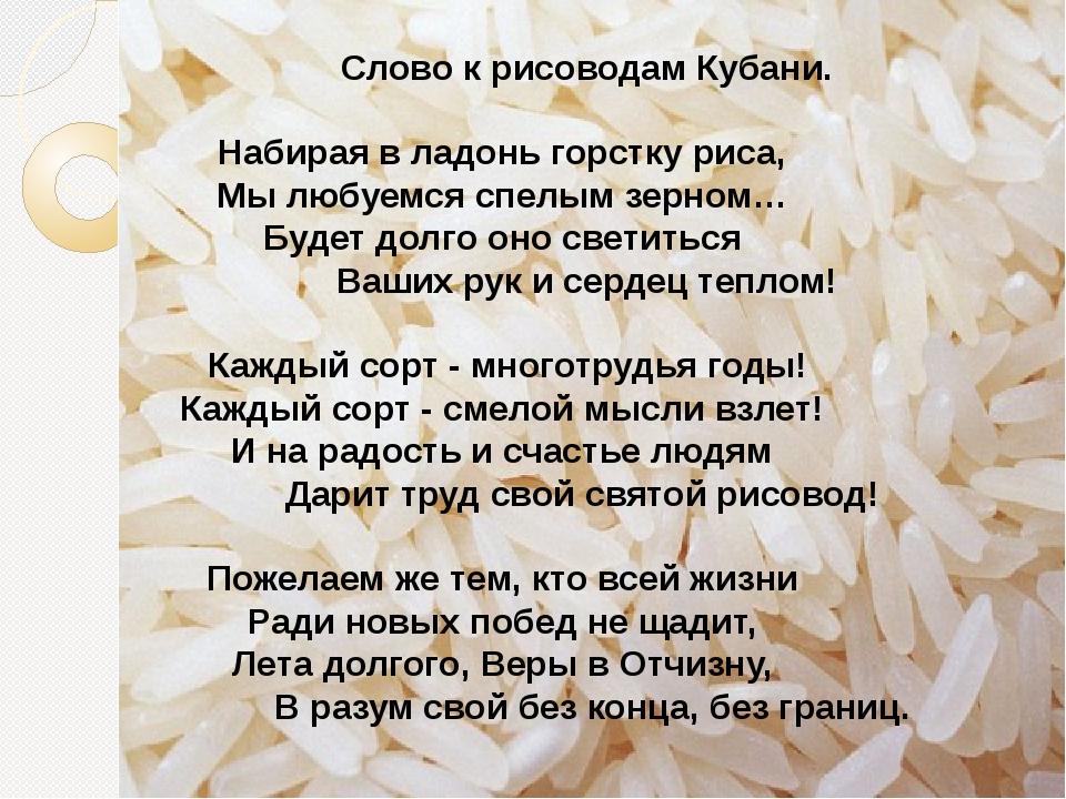 Слово к рисоводам Кубани. Набирая в ладонь горстку риса, Мы любуемся спелым з...