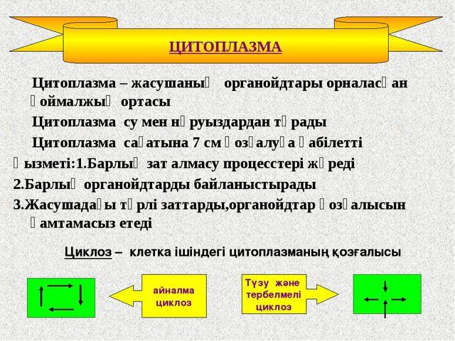 Цитоплазма – жасушаның органойдтары орналасқан қоймалжың ортасы Цитоплазма с...