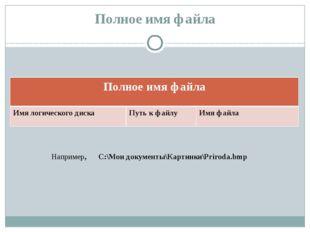 Полное имя файла Например, С:\Мои документы\Картинки\Priroda.bmp Полное имя ф
