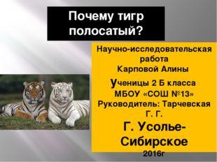 Почему тигр полосатый? Научно-исследовательская работа Карповой Алины ученицы