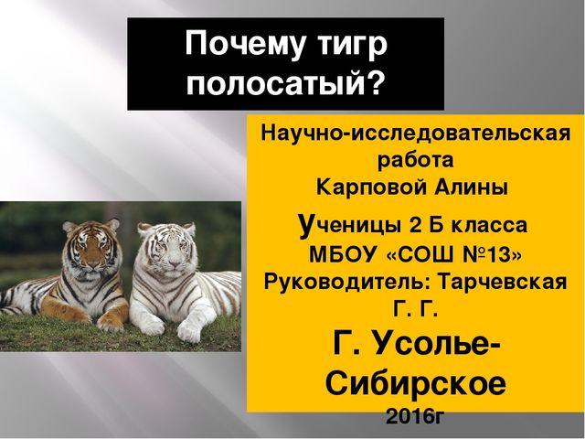 Почему тигр полосатый? Научно-исследовательская работа Карповой Алины ученицы...