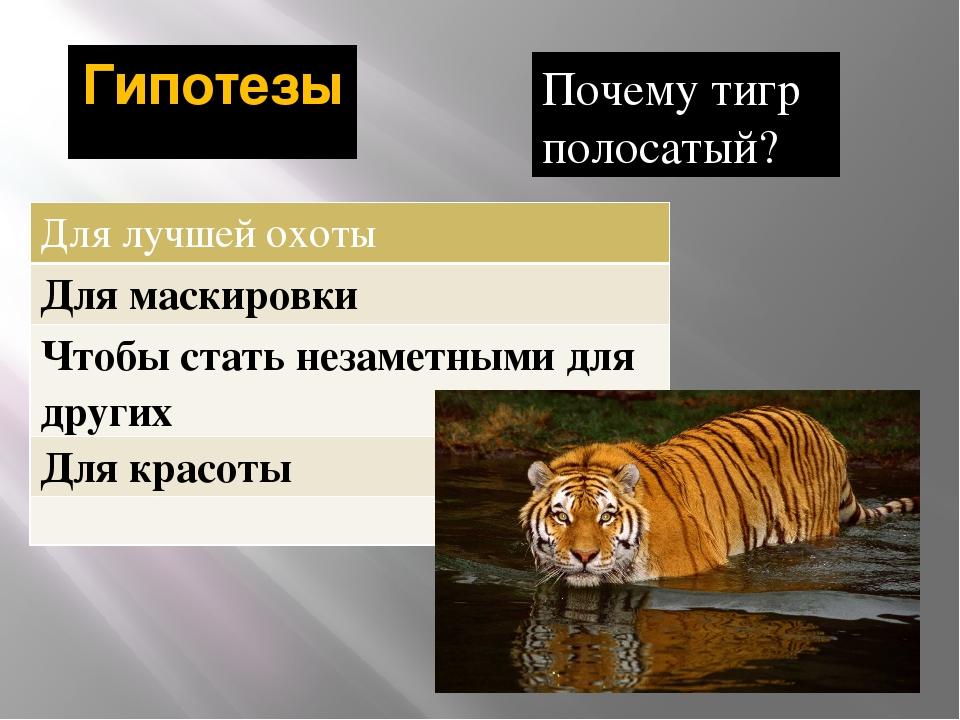 Гипотезы Почему тигр полосатый? Для лучшей охоты Для маскировки Чтобы стать н...