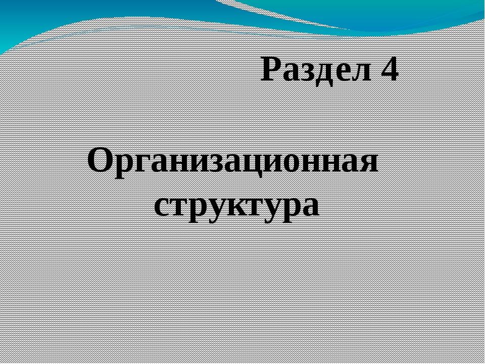 Организационная структура Раздел 4