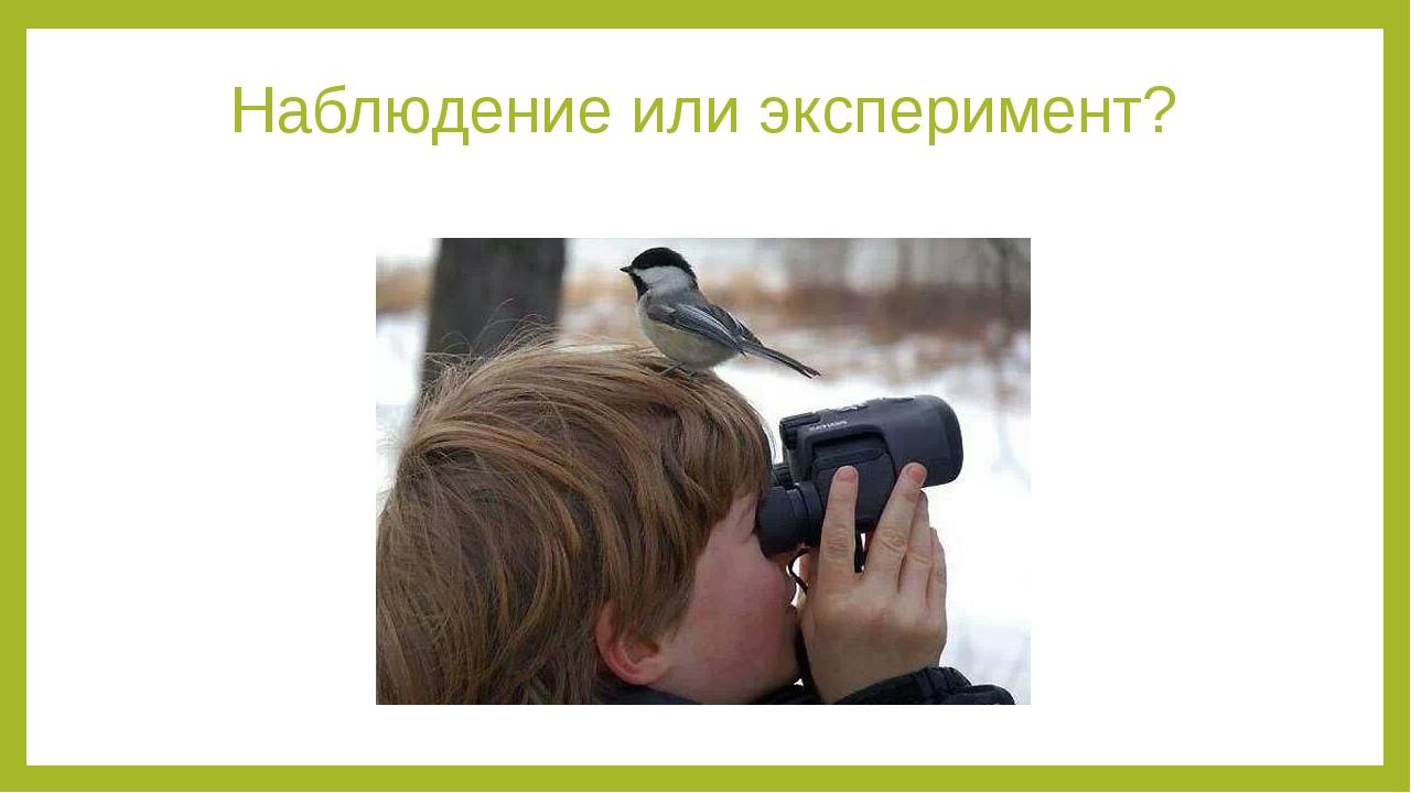 Наблюдение или эксперимент?