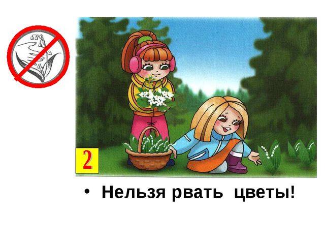 Нельзя рвать цветы!