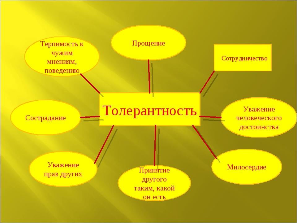 Сотрудничество Толерантность Прощение Терпимость к чужим мнениям, поведению С...