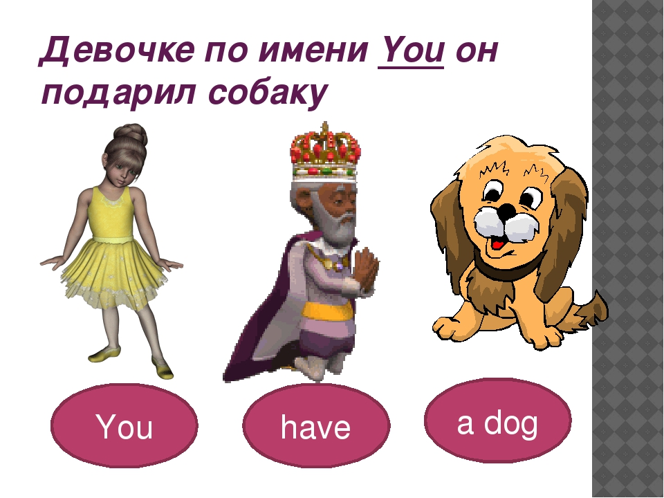 Девочке по имени You он подарил собаку You have a dog