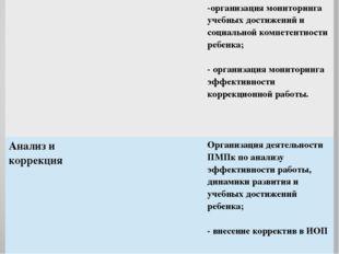 -организация мониторинга учебных достижений и социальной компетентности ребе