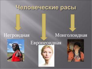 Негроидная Монголоидная Европеоидная