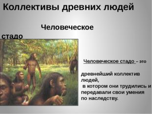Коллективы древних людей Человеческое стадо Человеческое стадо – это древнейш