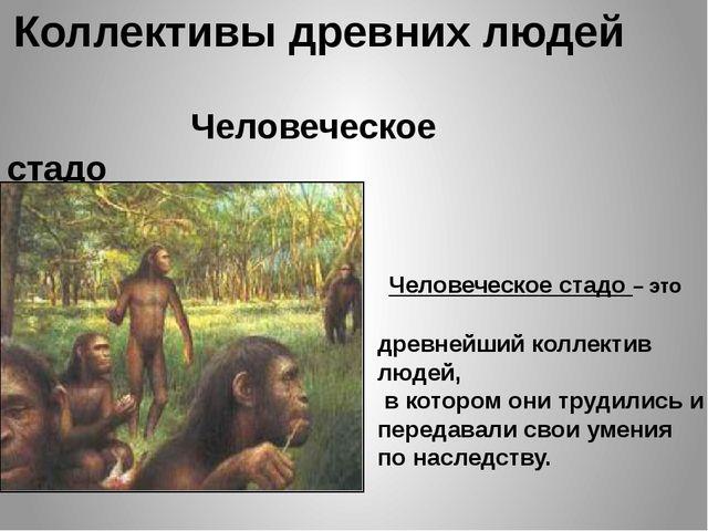Коллективы древних людей Человеческое стадо Человеческое стадо – это древнейш...