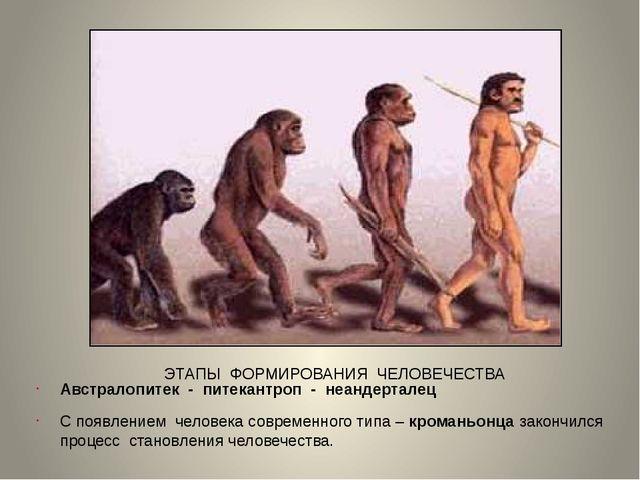 ЭТАПЫ ФОРМИРОВАНИЯ ЧЕЛОВЕЧЕСТВА Австралопитек - питекантроп - неандерталец С...