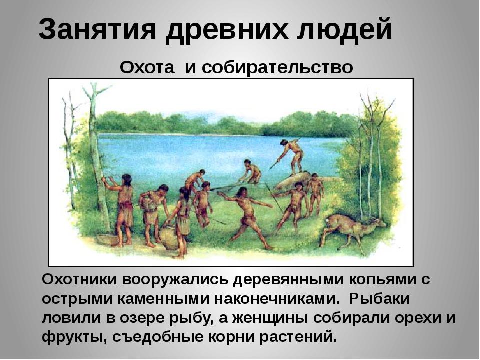Занятия древних людей Охота и собирательство Охотники вооружались деревянными...