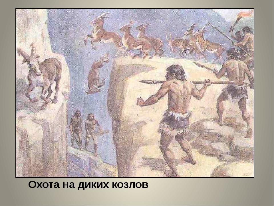 Охота на диких козлов