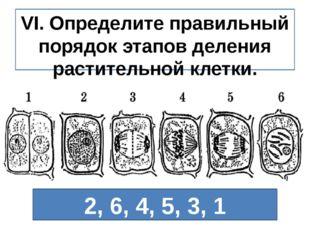 VI. Определите правильный порядок этапов деления растительной клетки. 2, 6, 4