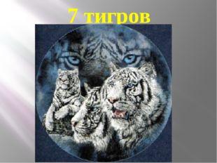7 тигров