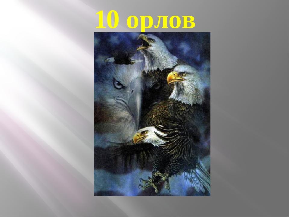 10 орлов