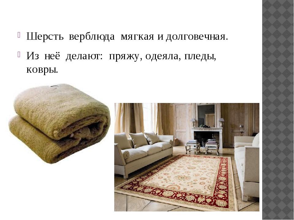 Шерсть верблюда мягкая и долговечная. Из неё делают: пряжу, одеяла, пледы, ко...