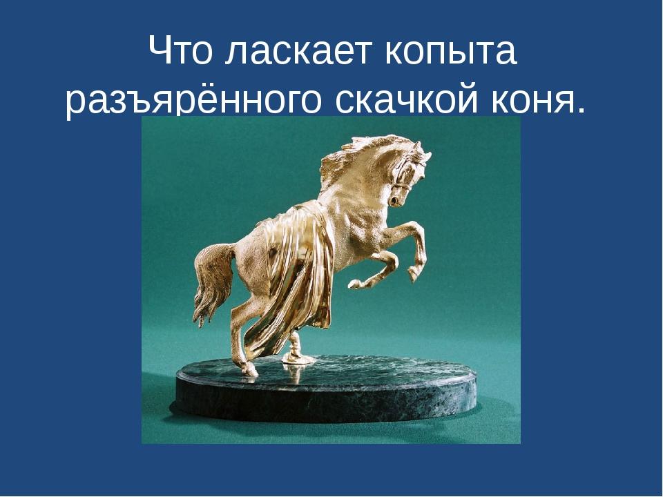 Что ласкает копыта разъярённого скачкой коня.
