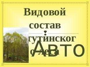 Видовой состав Ватутинского леса Автор: ученик 5класса «В» Новиков Вадим Преп
