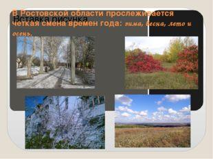 В Ростовской области прослеживается четкая смена времен года: зимa, веснa, л