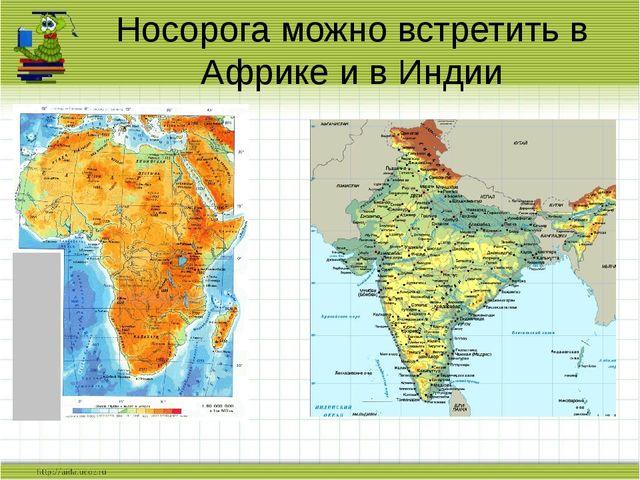Носорога можно встретить в Африке и в Индии