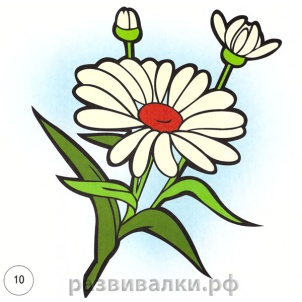 hello_html_m6b2687c7.jpg