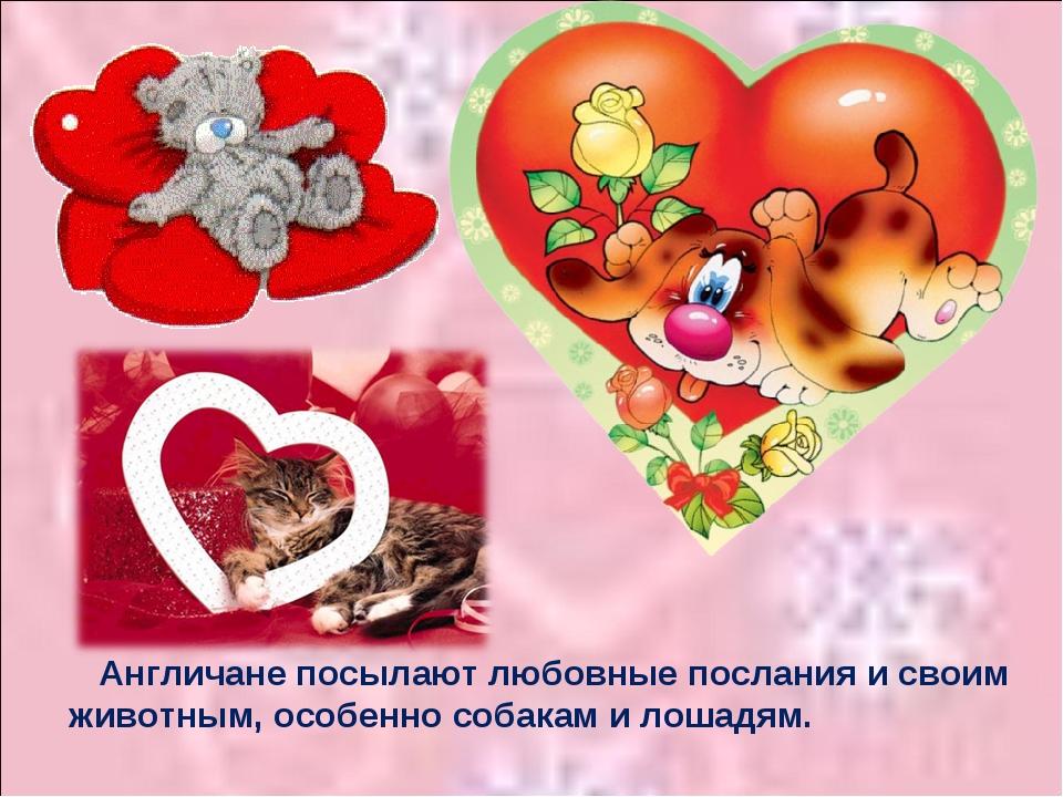 Англичане посылают любовные послания и своим животным, особенно собакам и ло...