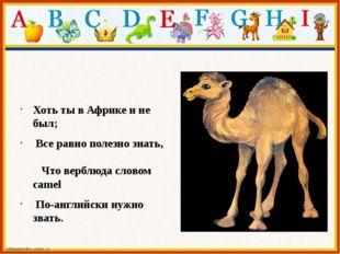 Хоть ты в Африке и не был; Все равно полезно знать, Что верблюда словом came