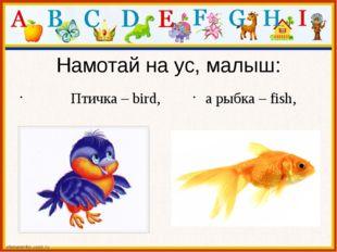 Намотай на ус, малыш: Птичка – bird, а рыбка – fish,