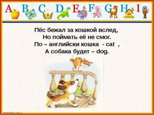 Пёс бежал за кошкой вслед, Но поймать её не смог. По – английски кошка - cat