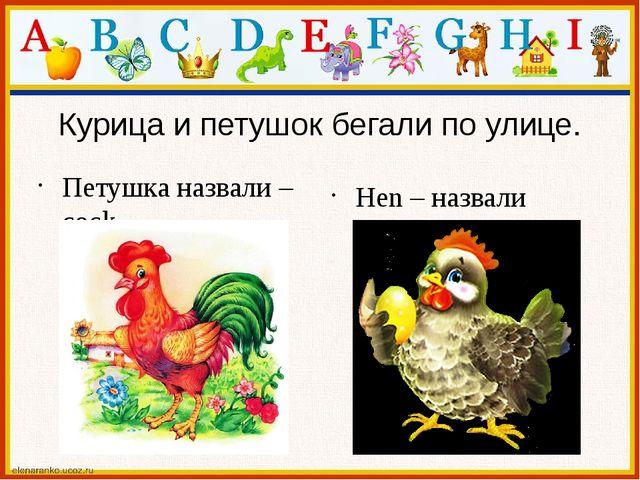 Курица и петушок бегали по улице. Петушка назвали – cock. Hen – назвали курицу.