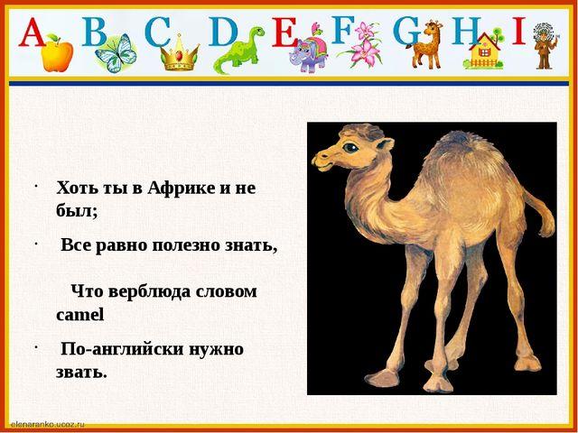 Хоть ты в Африке и не был; Все равно полезно знать, Что верблюда словом came...