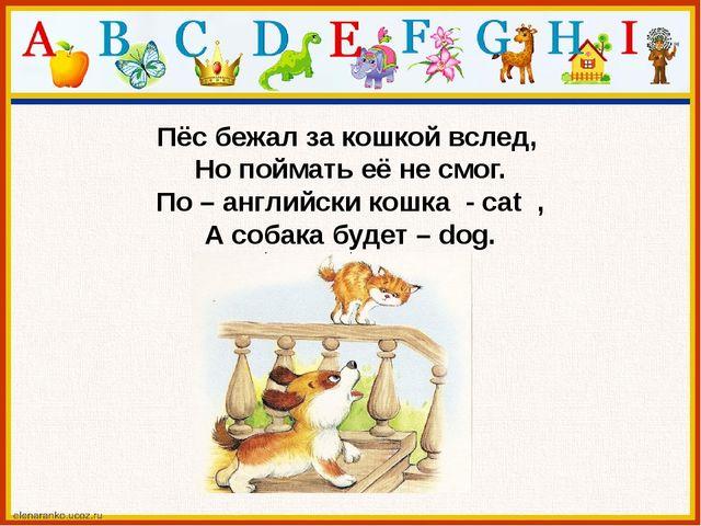 Пёс бежал за кошкой вслед, Но поймать её не смог. По – английски кошка - cat...