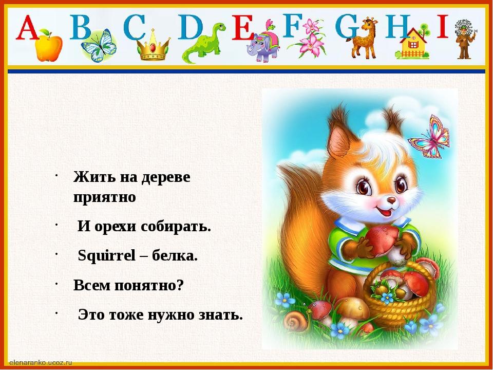 Жить на дереве приятно И орехи собирать. Squirrel – белка. Всем понятно? ...