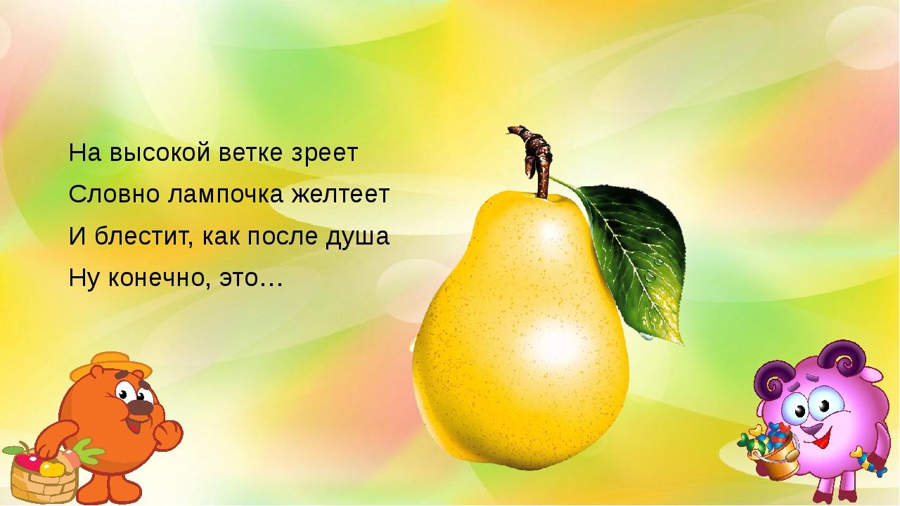 На высокой ветке зреет Словно лампочка желтеет И блестит, как после душа Ну...