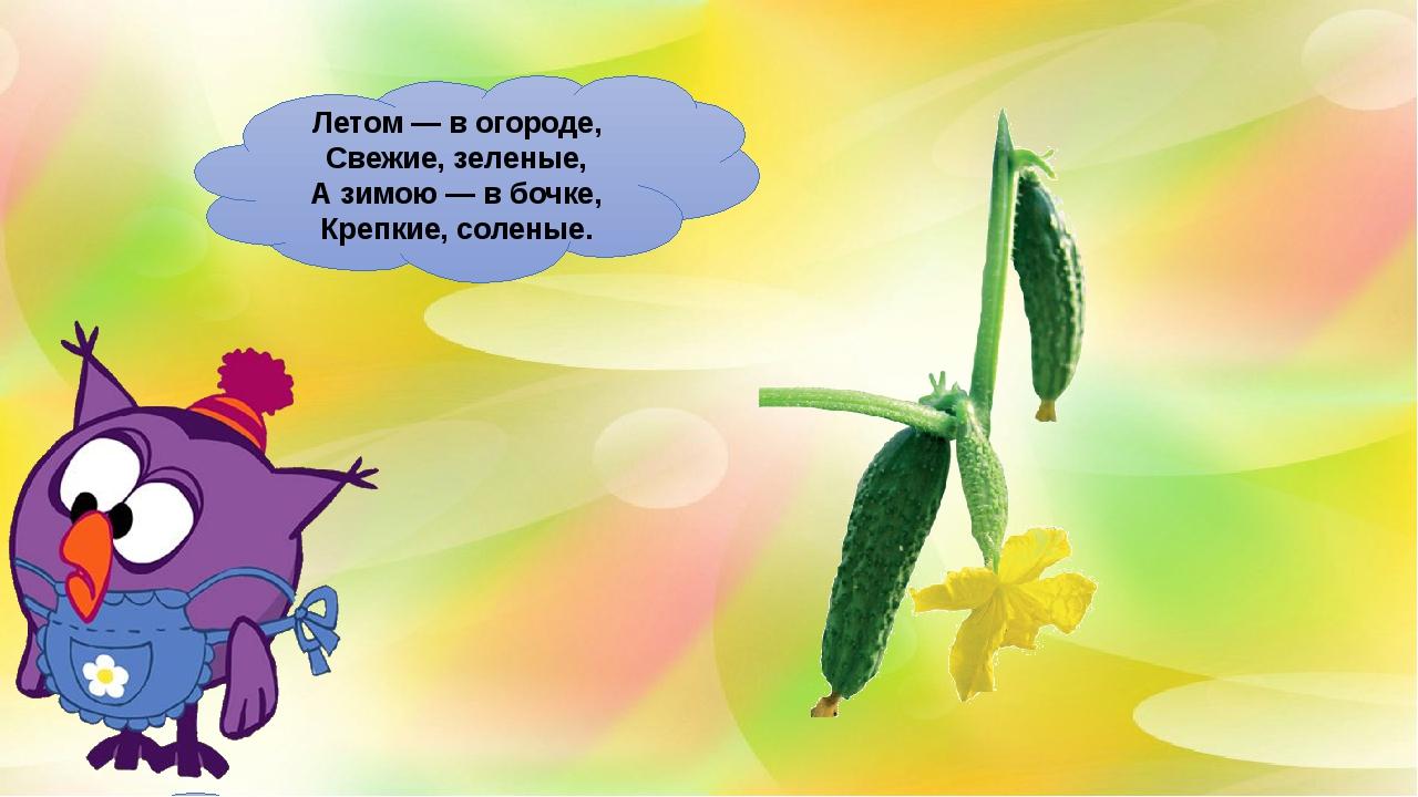 Летом— вогороде, Свежие, зеленые, Азимою— вбочке, Крепкие, соленые.