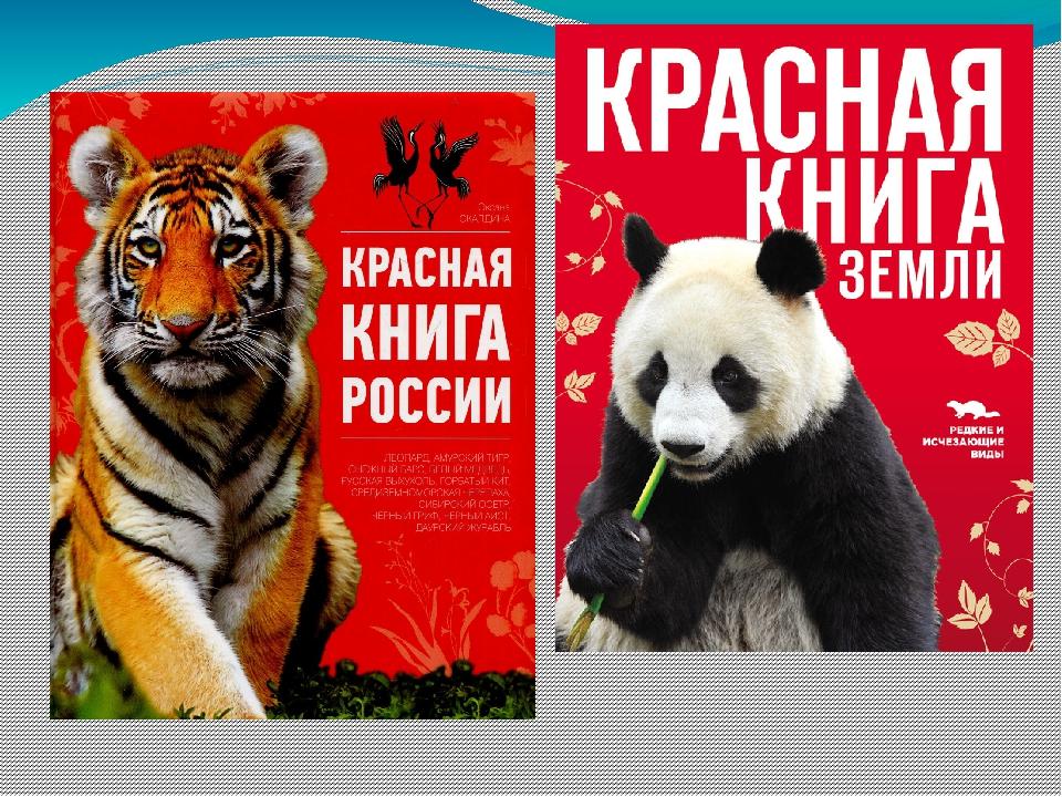 Прикольные картинки красной книги